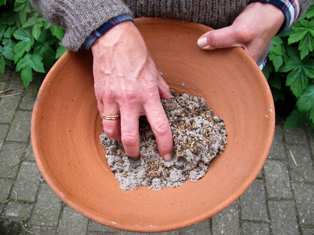 Frø og sand blandes for at gøre det nemmere at sprede frøene ud.