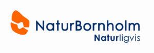 NaturBornholm-logo rentegnet